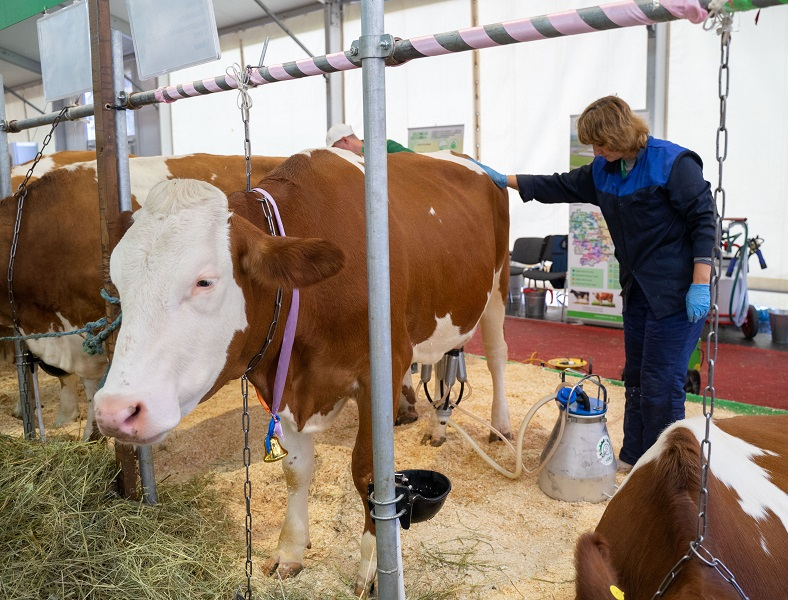 В России появятся зоотехники для органического животноводства