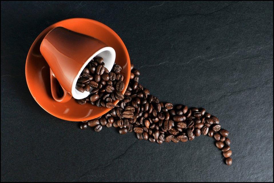 Ученые: к 2050 году может погибнуть половина кофейных плантаций