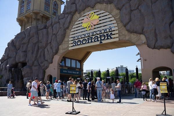 В Московский зоопарк пускают по сеансам, а дистанцию там измеряют в ламах