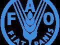 ФГБУ «ВНИИЗЖ» приняло участие в юбилейной выставке «ФАО: этапы большого пути. 75 лет на службе прогресса»