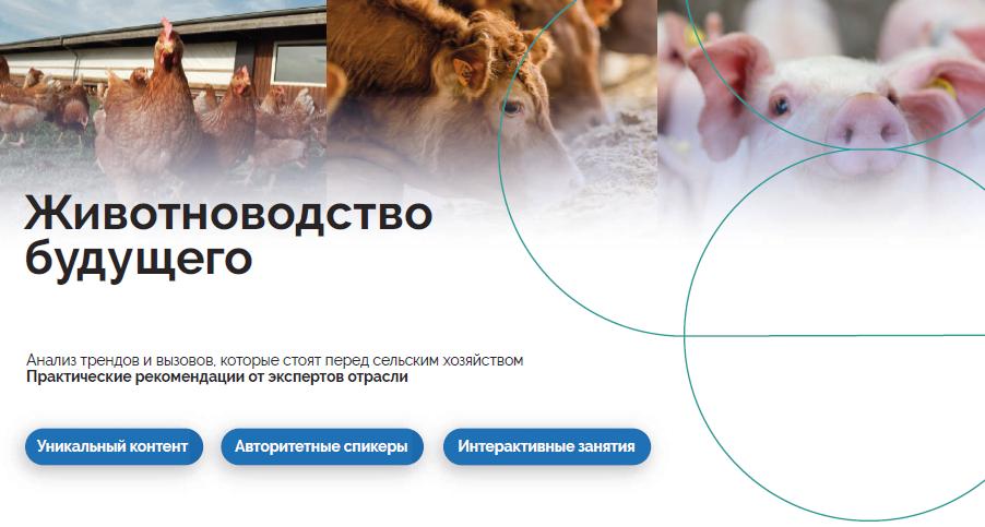 MSD Animal Health и СКОЛКОВО организовали образовательную программу  «Животноводство будущего»