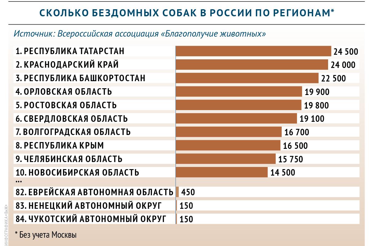 Сколько бездомных собак насчитывается в регионах России