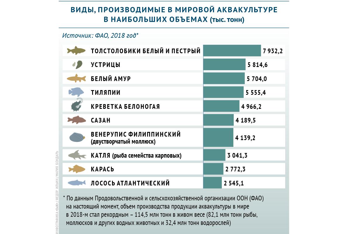 Какие виды производятся в мировой аквакультуре в наибольших объемах
