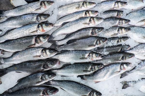 Россельхознадзор открыл рынок Вьетнама для российской рыбы
