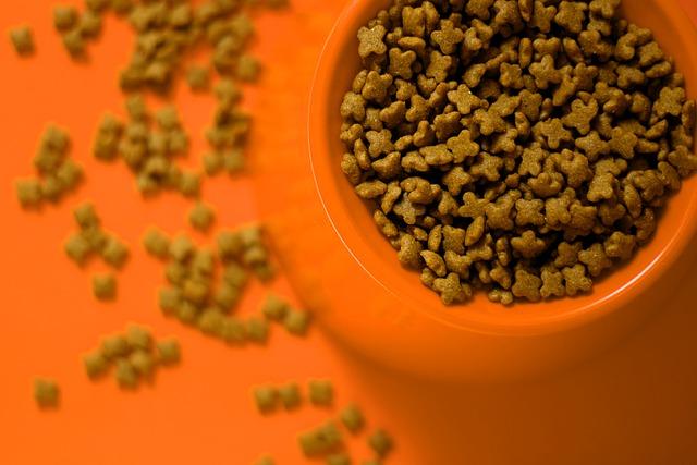 Причиной массовой гибели собак в США назвали токсичный корм