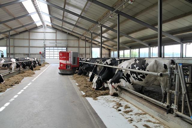 В Рязанской области построили молочную ферму на 2,3 тыс. голов
