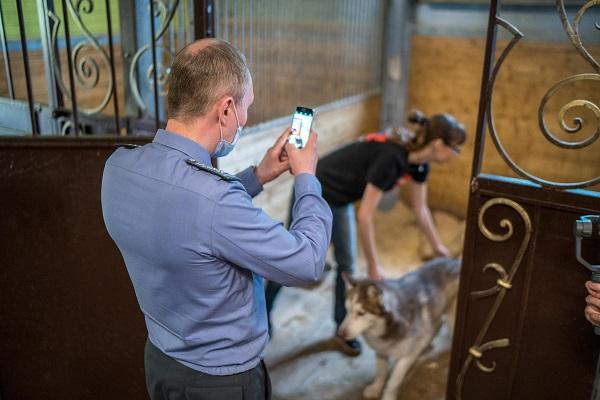Минприроды предлагает изменить правила госконтроля при обращении с животными