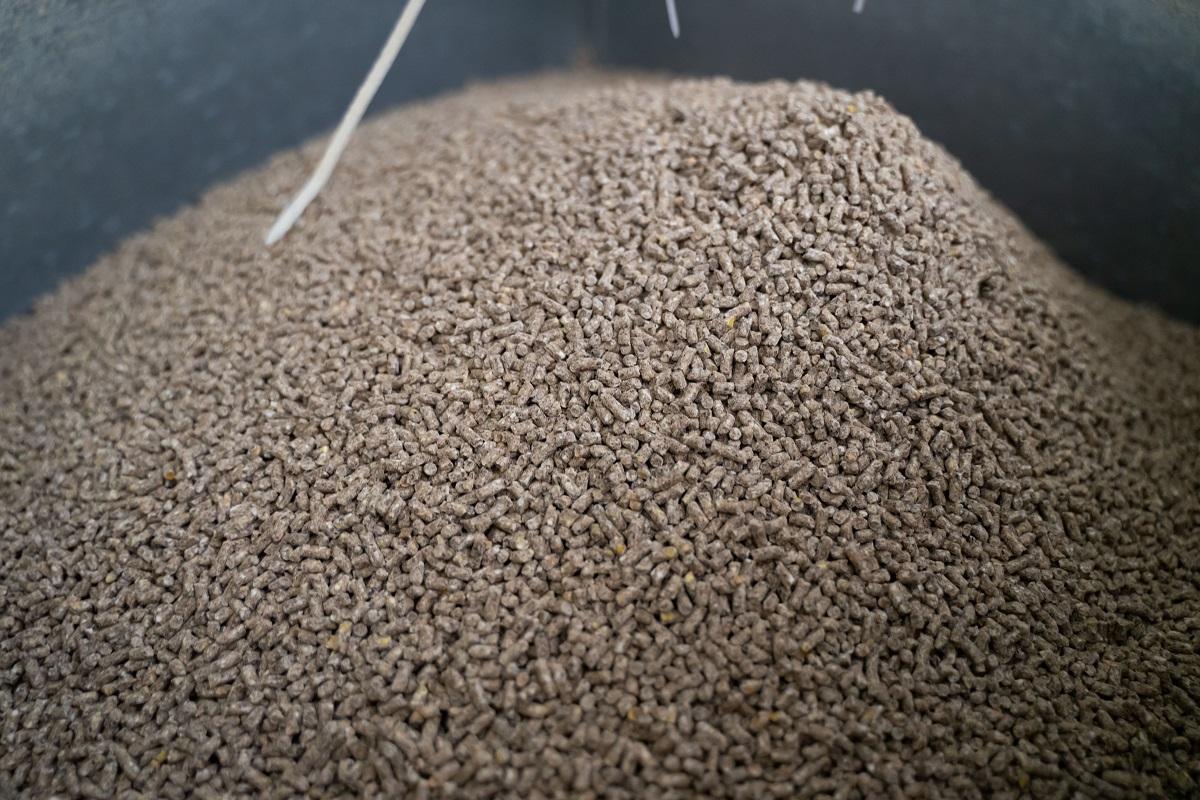 Россия просит Бельгию приостановить поставки кормов и кормовых добавок
