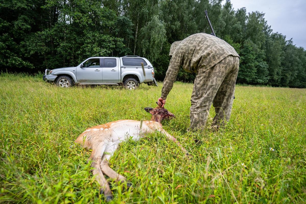 Ветспециалисты предупредили охотников об опасности трихинеллеза