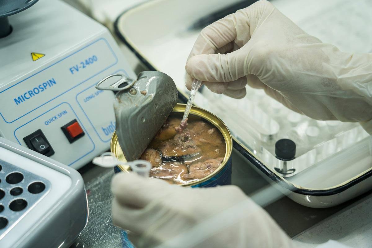Эксперты признали 89% российских рыбных консервов некачественными