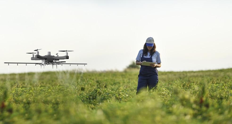 Фермерам разрешат продавать сельхозпродукцию на своих участках